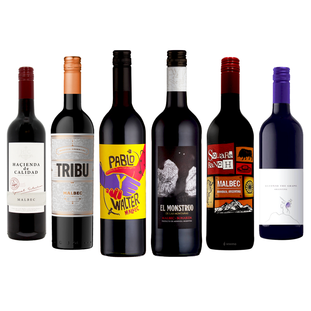Argentinian Red Wine Case