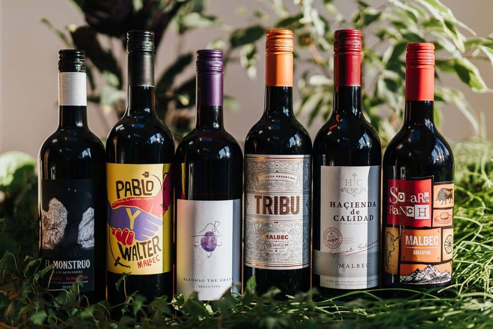 Mixed Argentina Red Wines x 6   Grape Escapes