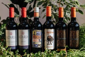 Mixed Chile Red Wines x 6 | Grape Escapes
