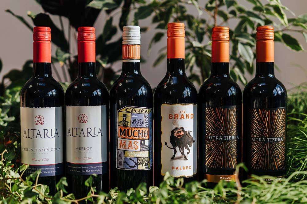 Mixed Chile Red Wines x 6   Grape Escapes