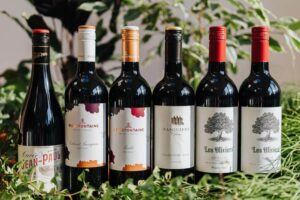 Mixed French Red Wines x 6 | Grape Escapes
