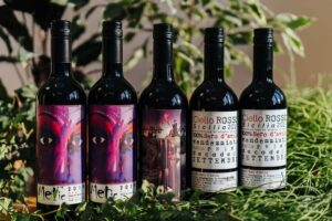 Mixed Natural Red Wine x 6 | Grape Escapes