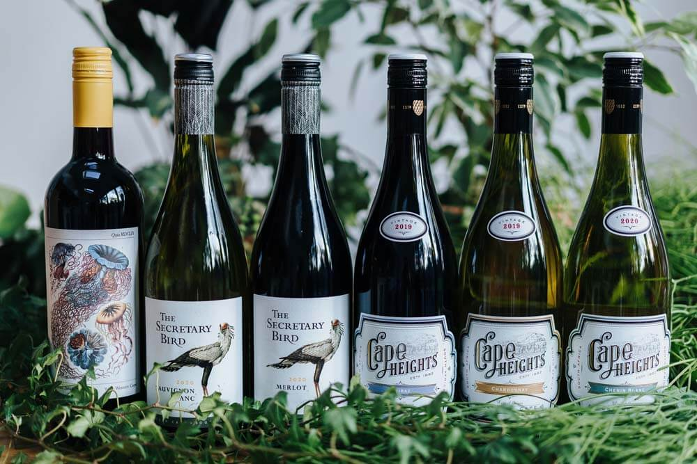Mixed South African Wine x 6   Grape Escapes